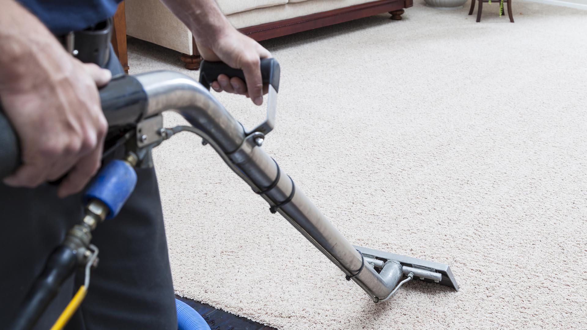 Kleanit.com Carpet Cleaning